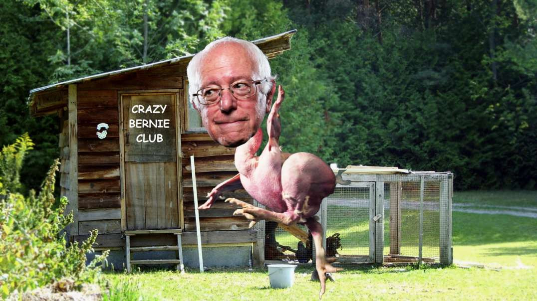 CRAZY BERNIE CHICKEN SANDERS