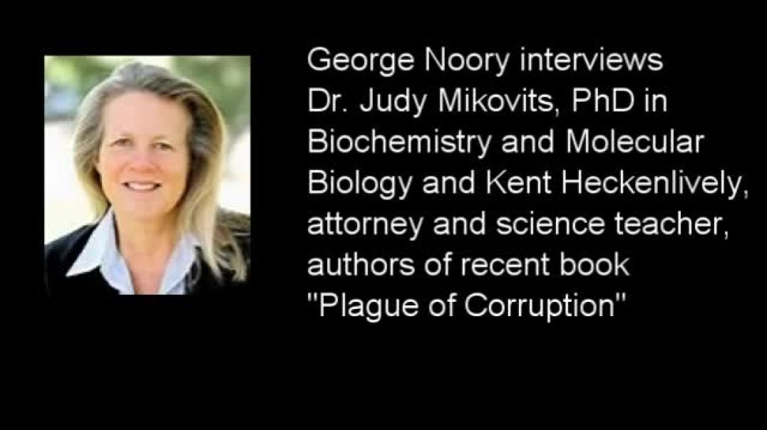 PLAGUE OF CORRUPTION BY DR JUDY MIKOVITS, KENT HECKENLIVELY