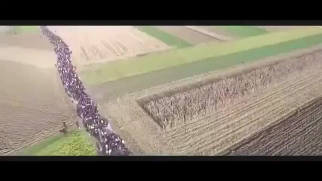 """This is the most disturbing muslim """"refugee"""" video you will ever see"""
