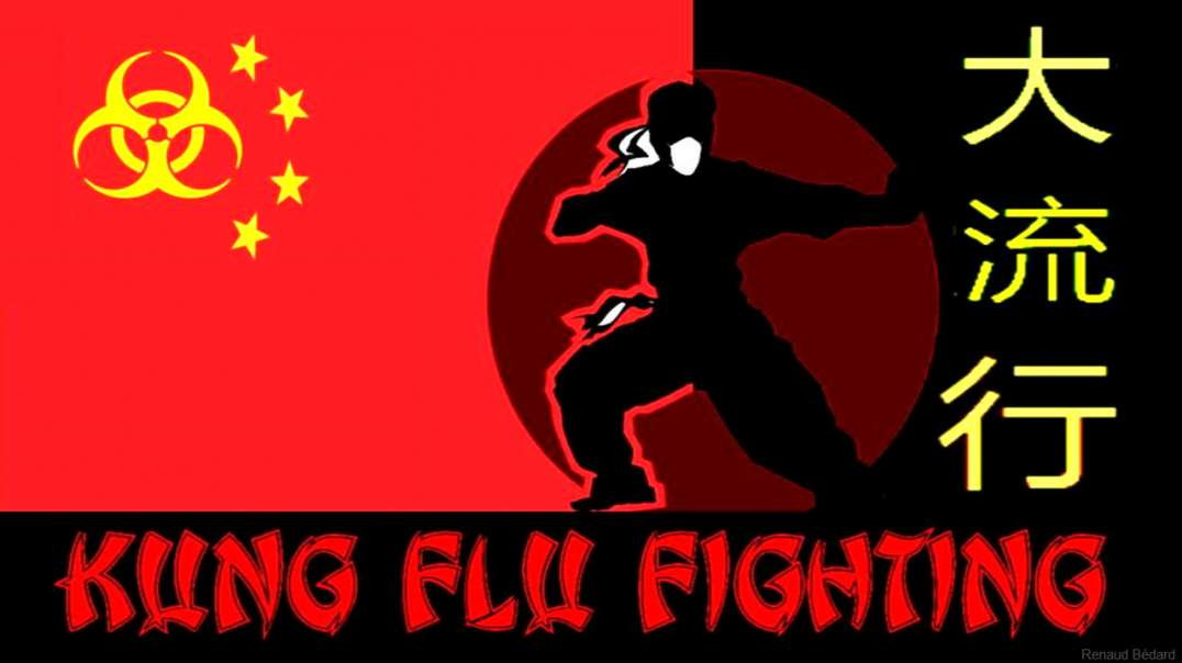 KUNG FLU FIGHTING SONG