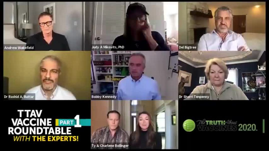 Part 1 The Truth About Vaccines 2020  Vaccine Roundtable With The Experts