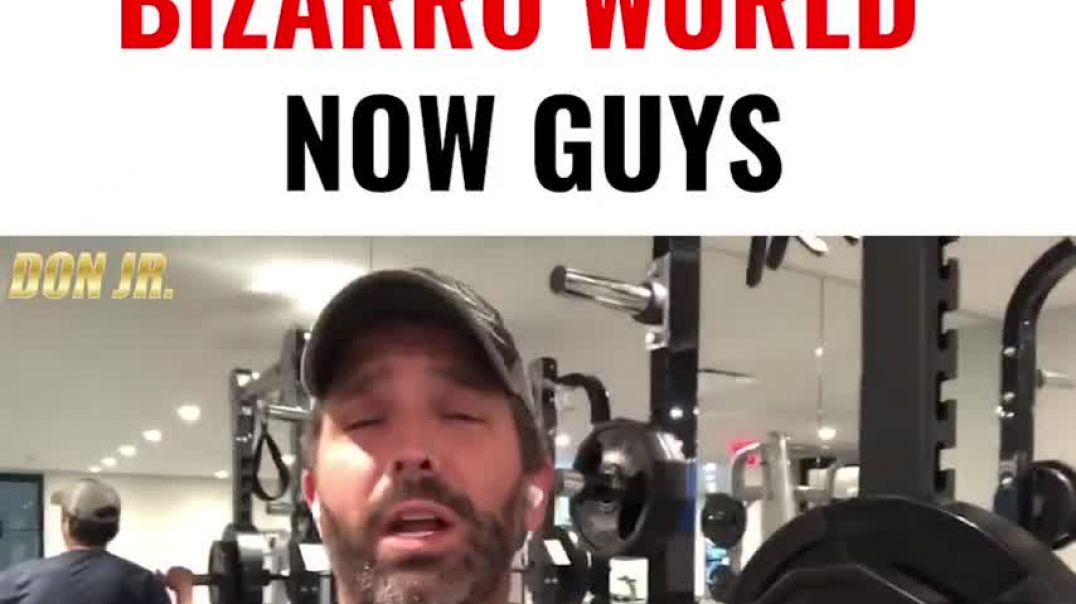 Donald-Trump-Jr-We're Living In Bizarro World Now, Guys Some   Sunday thoughts on everything go