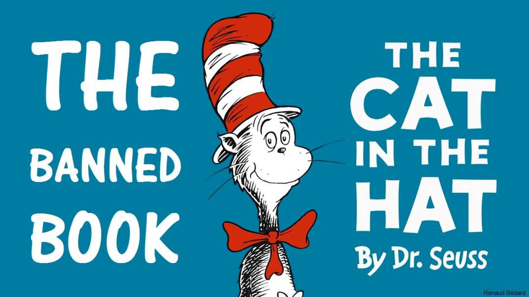 DR SEUSS THE CAT IN THE HAT (BANNED AS RACIST BY CCP CONTROLLED CANCEL CULTURE)