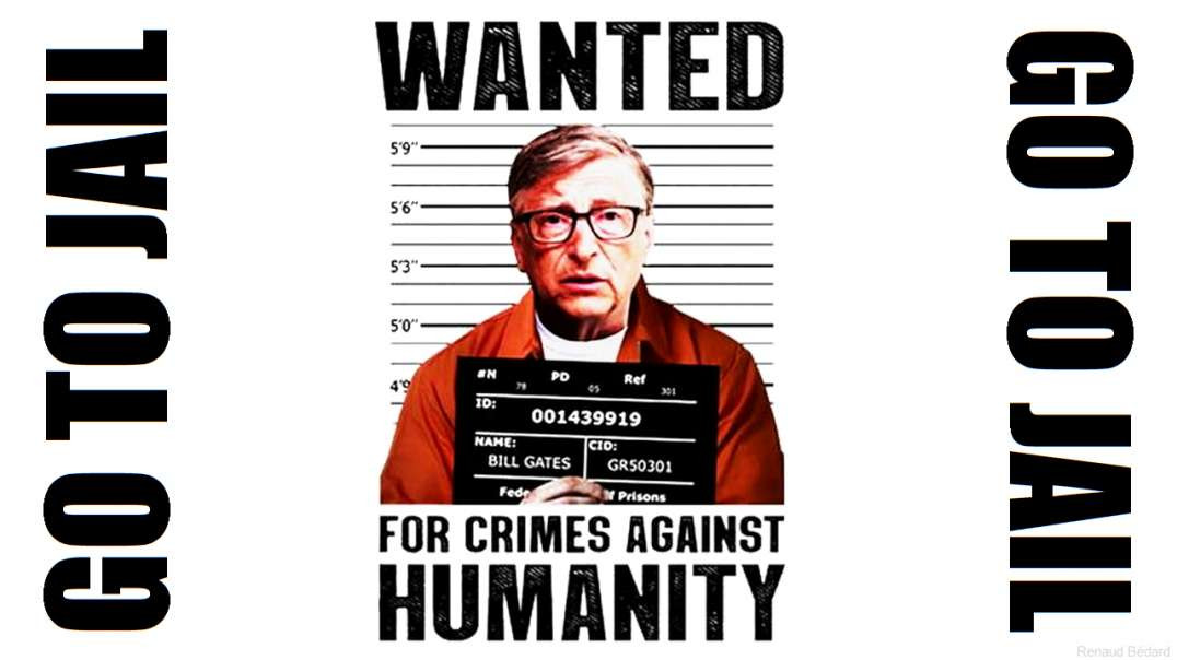 BILL GATES EPIDEMIC INTENTIONALLY CAUSED OR NATURALLY CAUSED