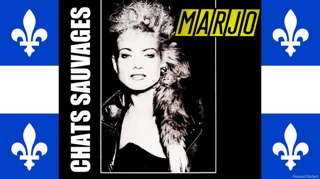 MARJO - CHATS SAUVAGES (WILD CATS)
