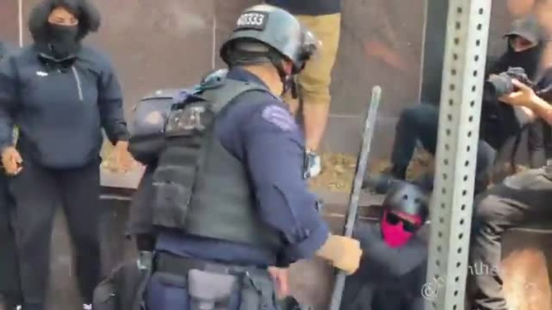LAPD giving antifa a good old beat down